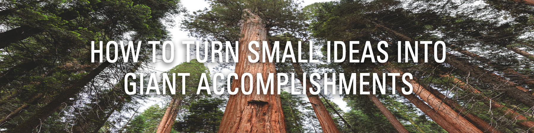 How to Turn Small Ideas Into Giant Accomplishments